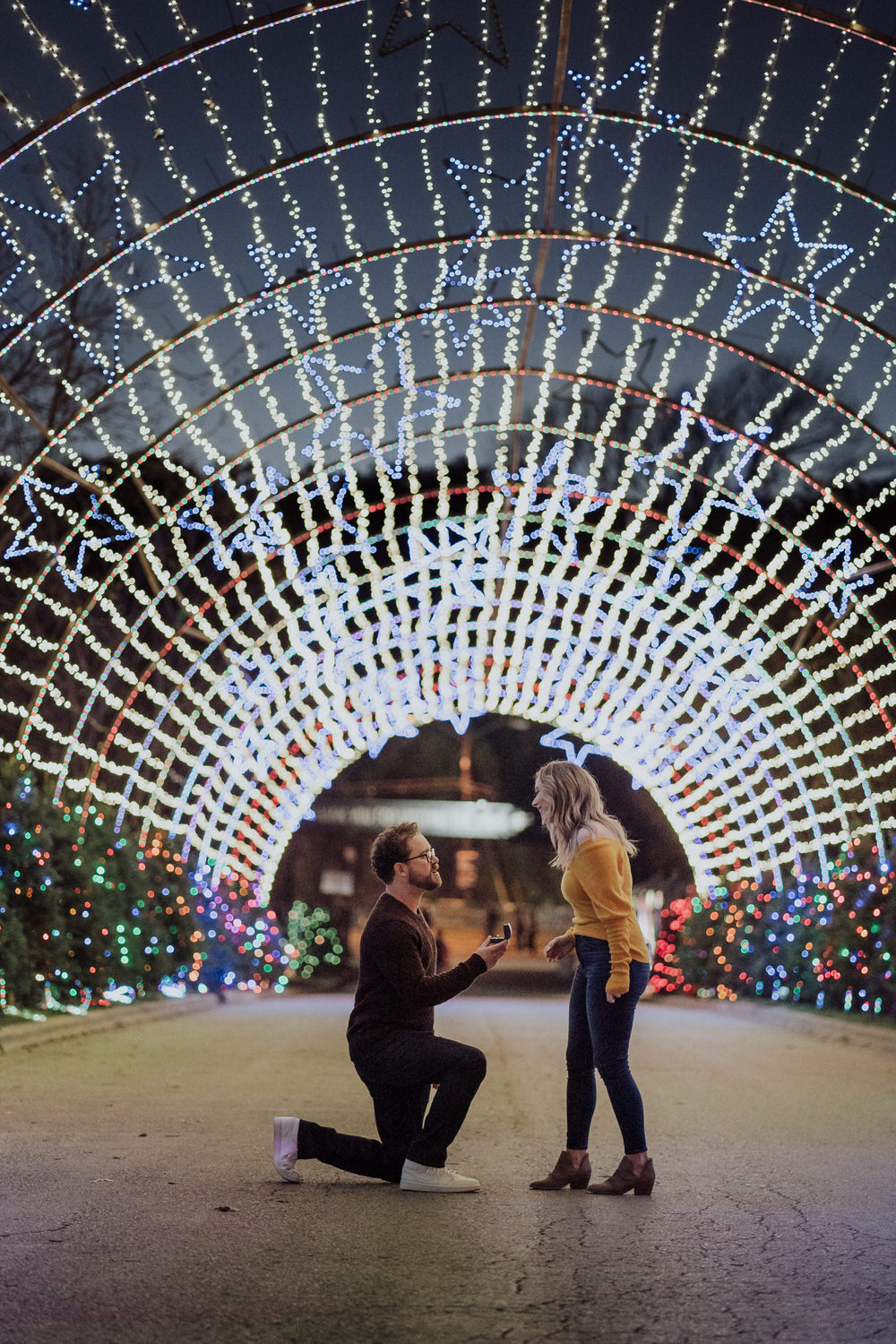 austin proposal at the trail of lights
